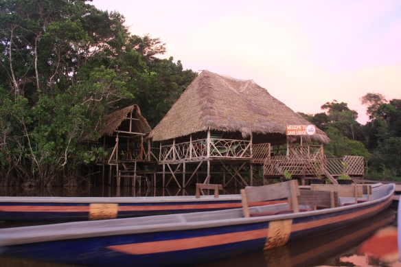 sani dockboats